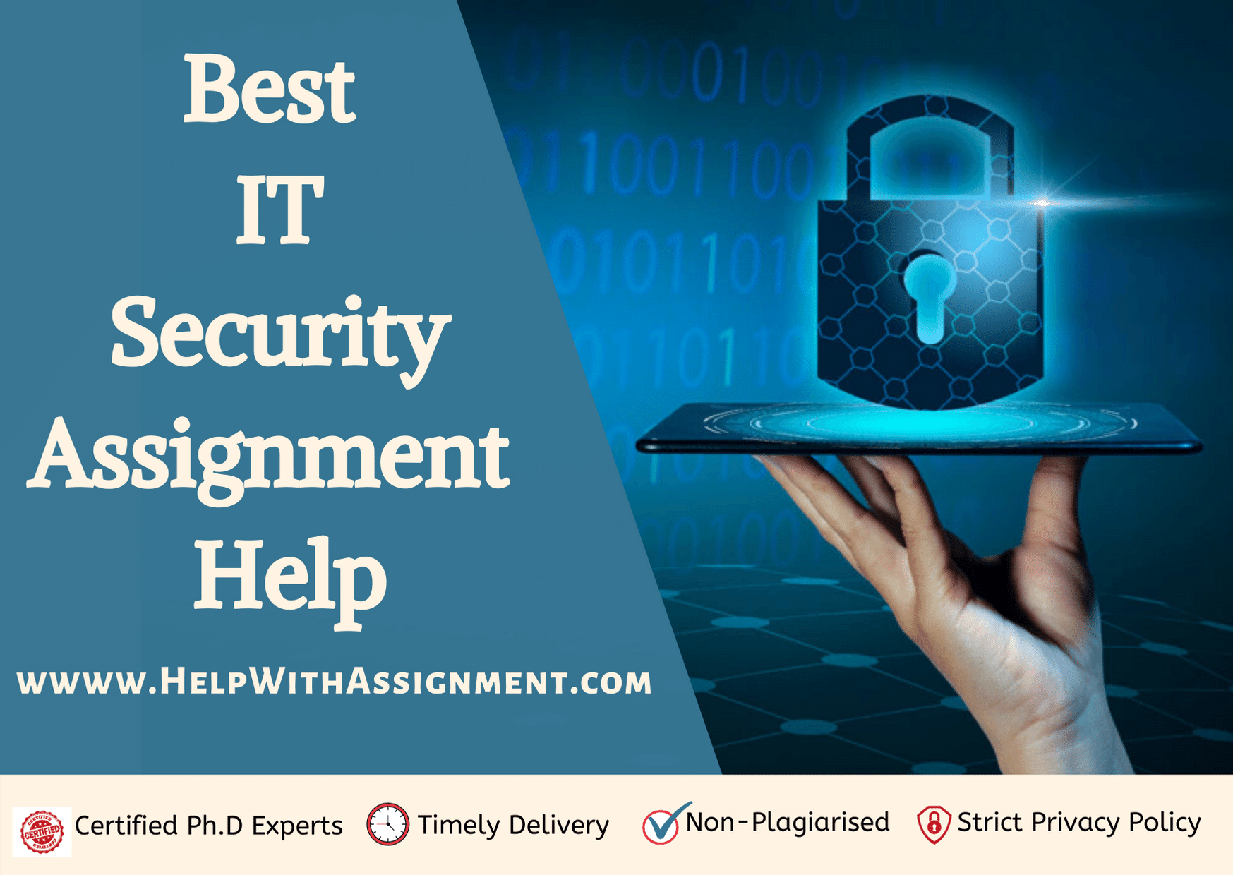 IT Security Assignment Help